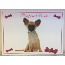 Pampered Pooch placemat