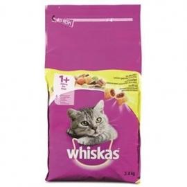 Whiskas droog adult kip 3,8kg