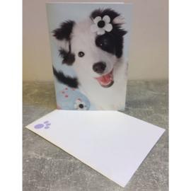 Studio Pets kaart hondje met bloemen cupcake
