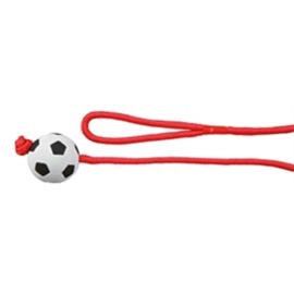 Voetbal aan touw drijvend
