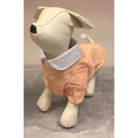 Hondenblouse met streepjesprint S