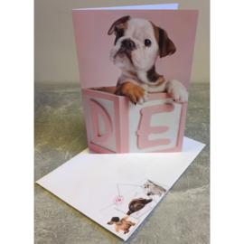 Studio Pets kaart puppy in blokkendoos