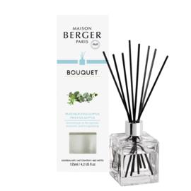 Maison Berger Parfumverspreider kubus  d'Eucalyptus