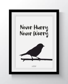 Never Hurry Never Worry