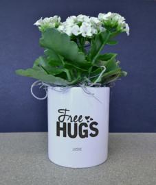 Bloempotje - Free Hugs