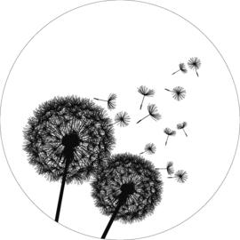 Wandcirkel - Blaasbloem