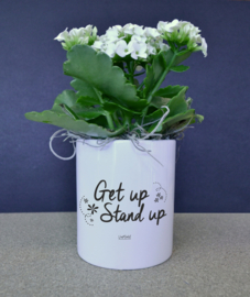 Bloempotje - Get up stand up