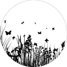 Wandcirkel -  vlinders
