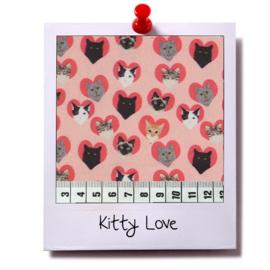 catnip cat pillow KITTY LOVE