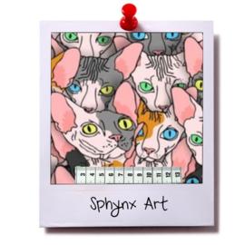 catnip cat pillow SPHYNX ART