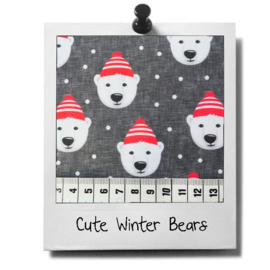 catnip cat pillow CUTE WINTER BEARS