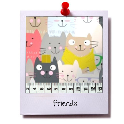 catnip cat pillow FRIENDS