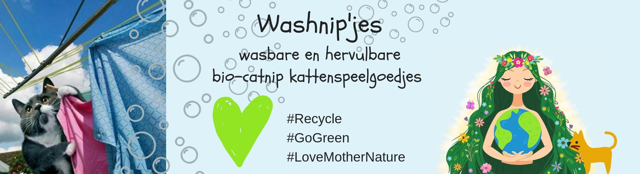 Washnip