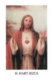 noveenkaarsen H. Hart Jezus per 6 stuks