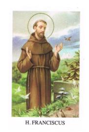 noveenkaarsen H. Franciscus per 6 stuks