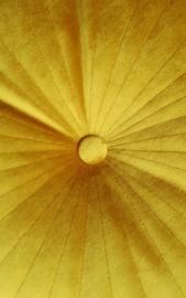 Velvet kussen geel