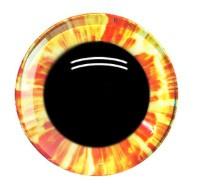 Oranje Gele Fantasie Veiligheids Ogen 12mm