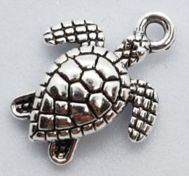 Bedel Zilverkleurig Schildpad