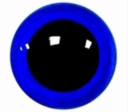 Veiligheidsogen Signaal Blauw 6mm (2 stuks)