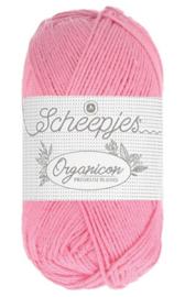 Scheepjes Organicon  207 Apple Blossom