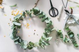Online kerstworkshop Eucalyptuskrans maken