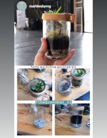 Online Workshop recycle terrarium maken