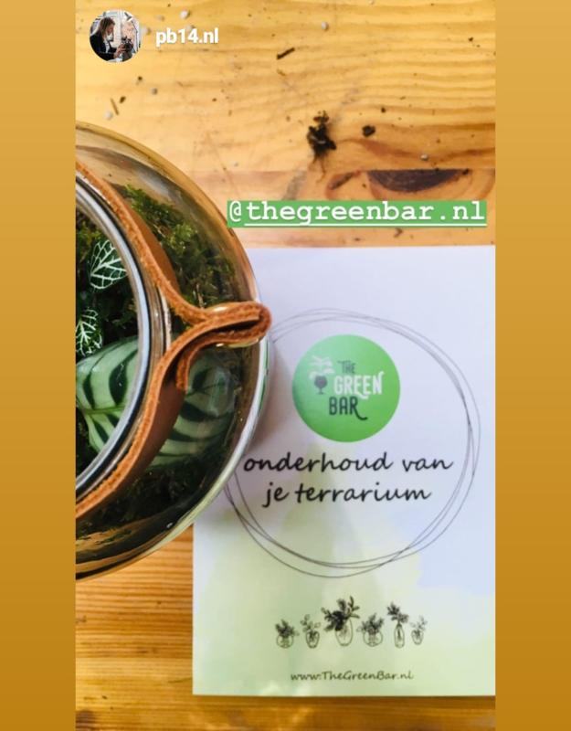 Workshop terrarium maken dinsdag 1 oktober