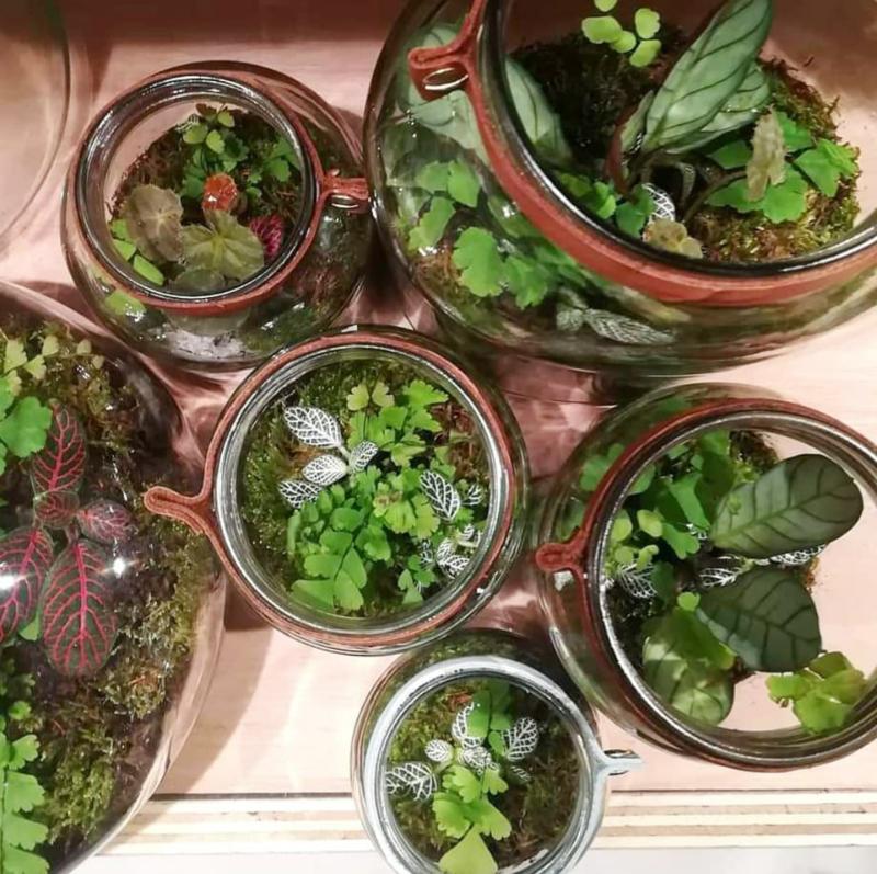 Workshop recycle terrarium maken zaterdag 30 maart