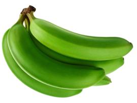 Bananen Bio Grün 864 Kilo