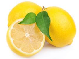 Zitronen 1000 Kilo NICHTBEHANDELTEM, BIO