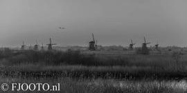 Kinderdijk 13 (Dibond)