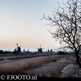 Kinderdijk 3 (Dibond)