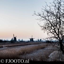 Kinderdijk 3 (Souvenir)