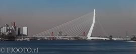 Rotterdam erasmusbrug panorama 10 (Xpozer)
