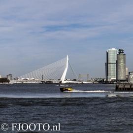 Rotterdam erasmusbrug vierkant (Canvas 2cm)