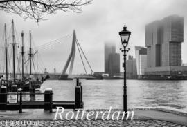Rotterdam #4.1 (Xpozer)