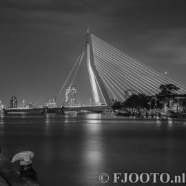 Rotterdam Erasmusbrug WHD5 (Souvenir)