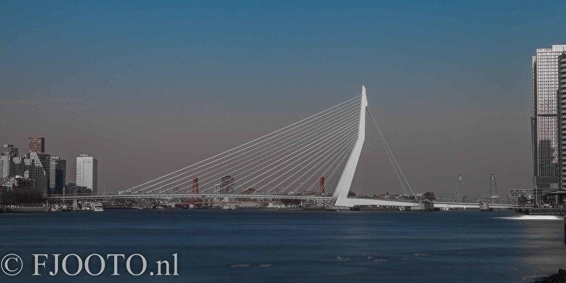 Rotterdam erasmusbrug panorama 9 (Poster)