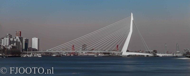 Rotterdam erasmusbrug panorama 10 (Poster)