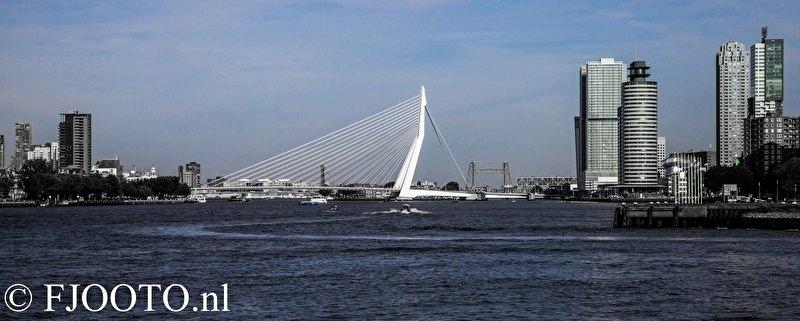 Rotterdam erasmusbrug panorama 1 (Poster)