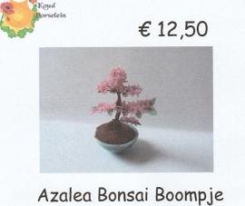 Workshop Azalea Bonsai Boompje