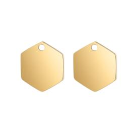 Oorbellen hangers | goud zeshoek - blanco
