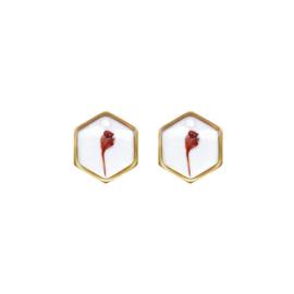 Oorbellen paar hangers | Droogbloem rood - GOUD