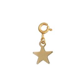 Ketting/Armband hanger - Ster goud