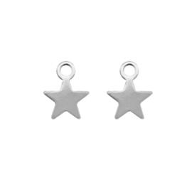 Oorbellen hangers |  STERRETJES - zilver