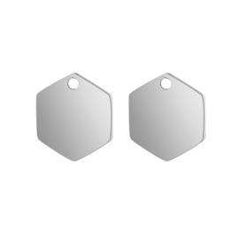 Oorbellen hangers | zilver zeshoek - blanco