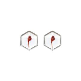 Oorbellen paar hangers | Droogbloem rood - ZILVER