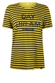 Zoso striped shirt with print - 215 Jill - spice yellow black