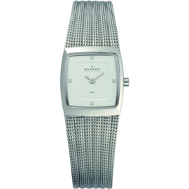 Skagen Design Horloge 22mm