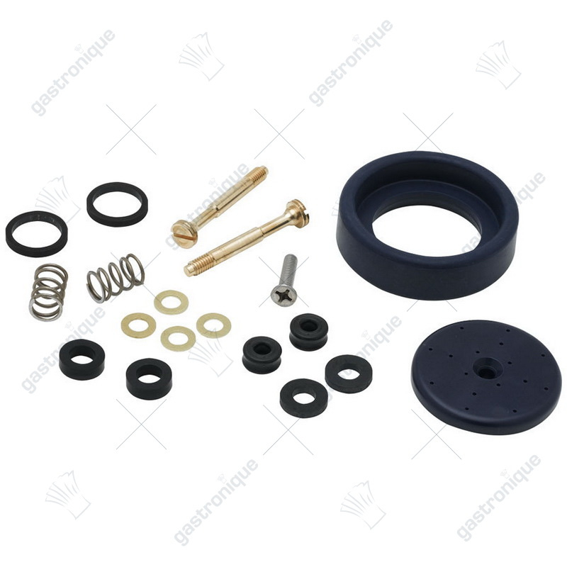 Spray Valve Repair Kit